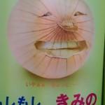 しょうゆ顔ならぬ野菜顔 ガジュマルくん (๑≧౪≦)ヒッヒッヒ