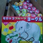 駄菓子の紹介 サンヨー製菓株式会社 モロッコヨーグルト |д゚)3