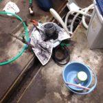 グリストラップ 厨房 清掃完了 ( ゚Д゚)